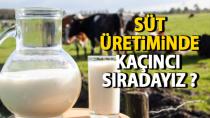 Süt üretiminde açıncı sıradayız ?