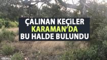 Mut'ta çalınan keçiler Karaman'da bu halde bulundu