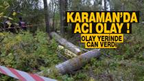 Karaman'da acı olay ! Kestiği ağacın altında can verdi