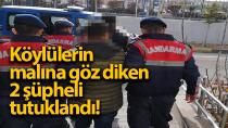 Karaman'da jandarma tarafından yakanan hırsızlar tutuklandı