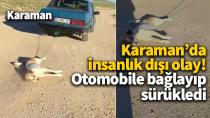 Karaman'da vicdansızlığın böylesi! Aracın arkasına bağlayıp sürükledi..