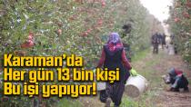 Karaman'da her gün 13 bin kişi bu iş için yola çıkıyor!